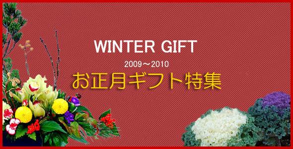 法人企業様の受付やご家庭用の個人のお客様へお正月 お年賀 花のフラワーギフトで新年のお正月アレンジをご用意させていただきました。 新年のお花GIFTできっと喜んでいただけるフラワーアレンジメントや花束を見つけることができます。